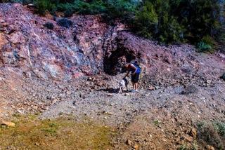 Copper Hill-9906