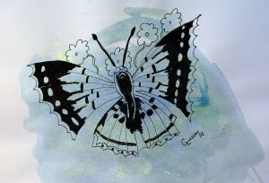 Butterfly-c3.jpg